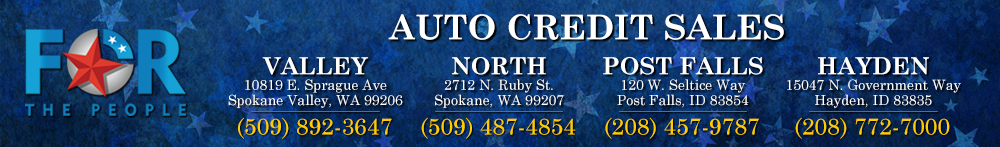 Auto Credit Sales